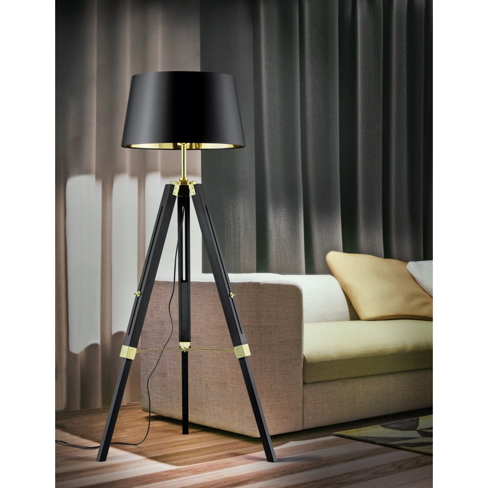 Modern Black Natural Wood Floor Lamp